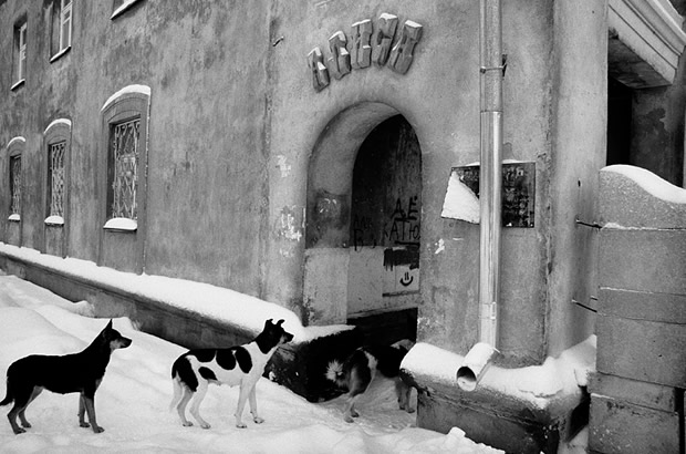 Декор жилого двора «Алиса» по 1-му Краснодонскому переулку