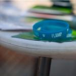 Пикник Флампа