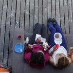 пикник флампа 2013