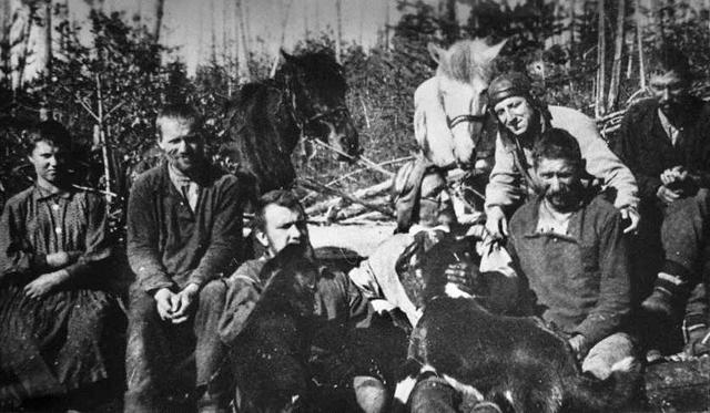 Экспедиция Кулика на расчистке дороги в районе эпицентра Тунгусского взрыва, 1928 год.