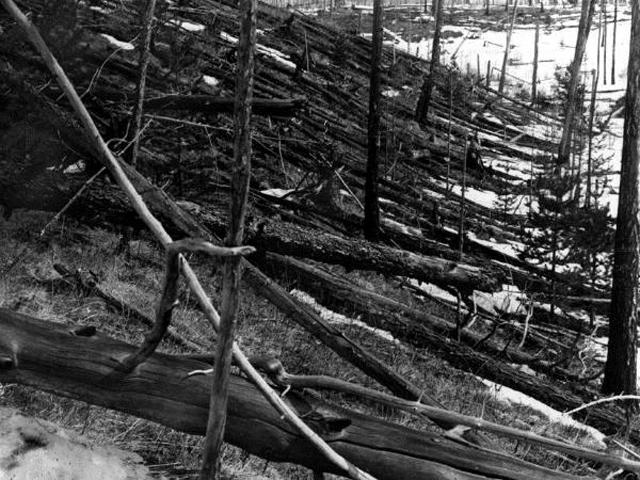 Сплошной вывал 80-ти миллионов деревьев покрыл площадь более чем в 2150 кв. км.