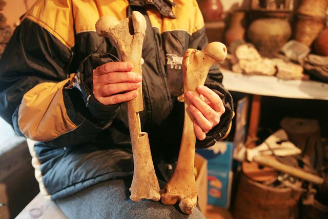 Бедренная кость пещерного льва, возраст которой, по данным научной экспертизы, около 30 тыс. лет