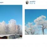Сибирская инстаграмота (2)