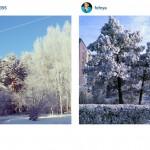 Сибирская инстаграмота (5)