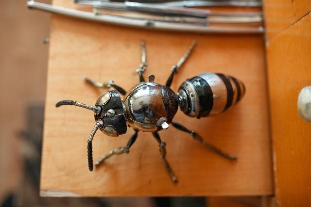 Пчела_Игорь Верный