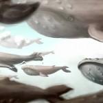 «Где растут дикие бабочки» Владки Макуровой
