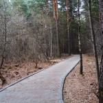 Велодорожка в «Заельцовском» парке