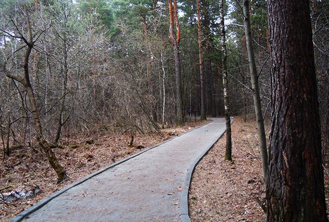 Велодорожка в ПКиО Заельцовский