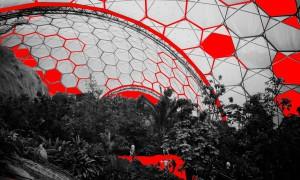 Эволюция фермы: дроны, агротуризм и мясо из пробирки